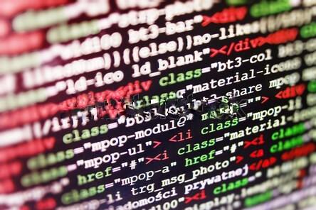 Programming vs. Web Development
